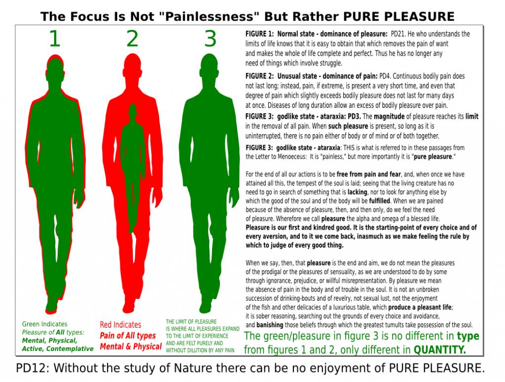 PurePleasureGraphic